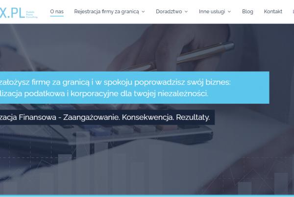 Projekt i pozycjonowanie strony PDtax