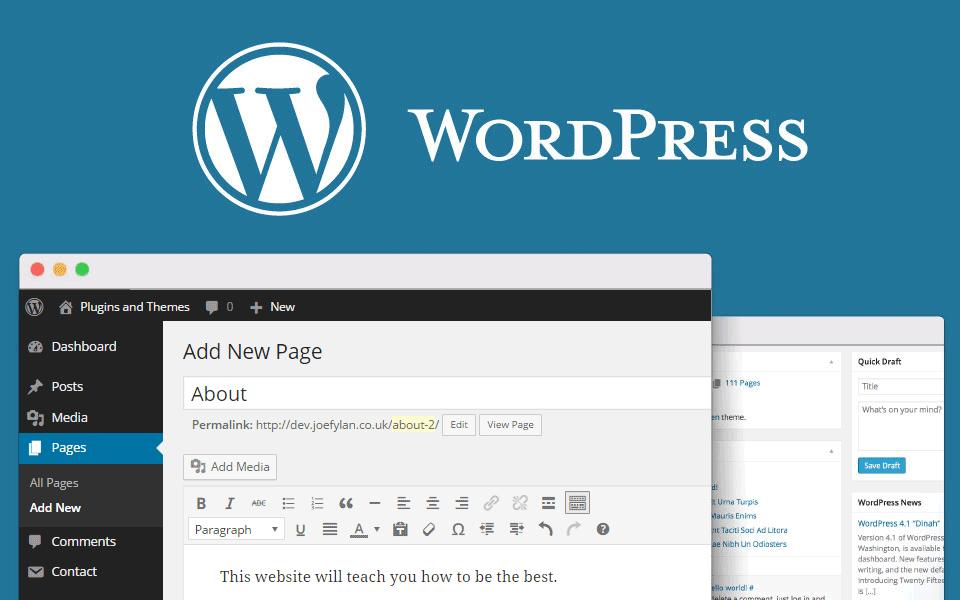 Jak dobrze wykonać pozycjonowanie strony WordPress?